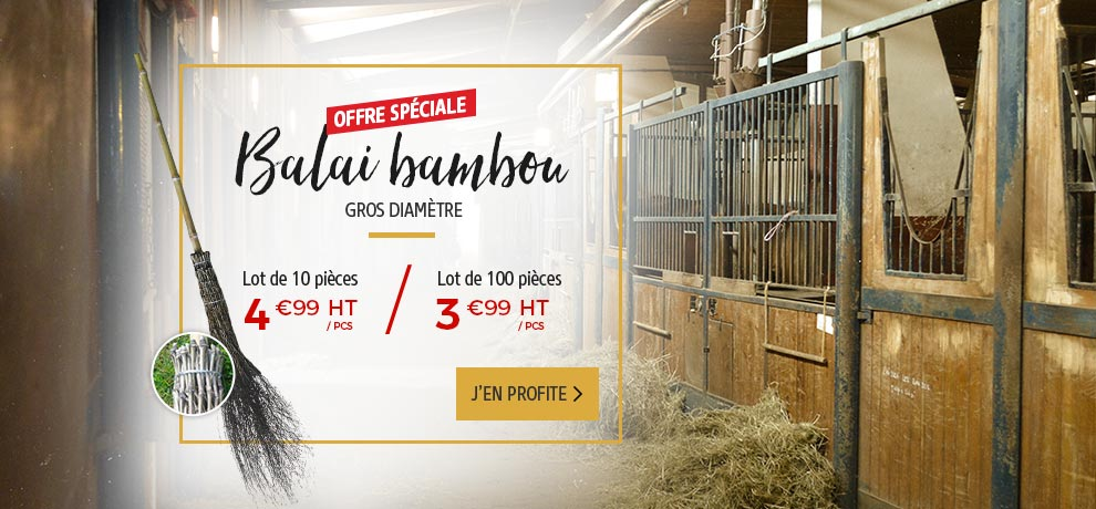 Offre-speciale-Balai-bambou