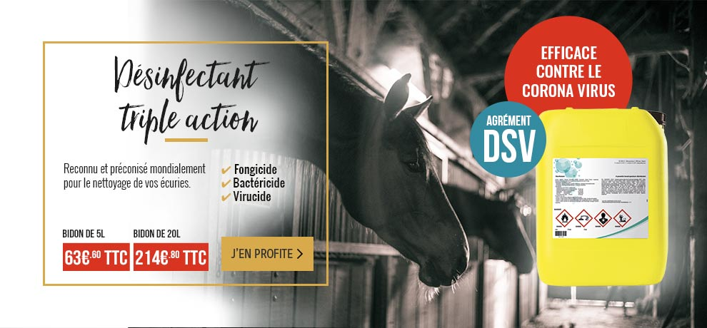 promo octobre 2019 desinfectant